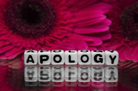 apology: Apology with pink flowers in the background  Stock Photo
