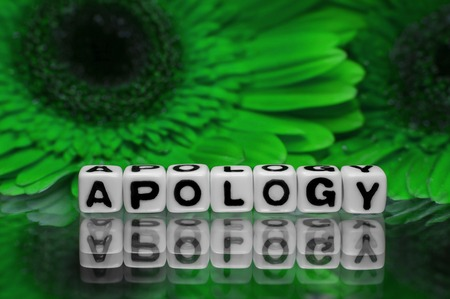 Apology with green flowers in the background  photo