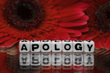 Apology text message with red flowers in the background  photo