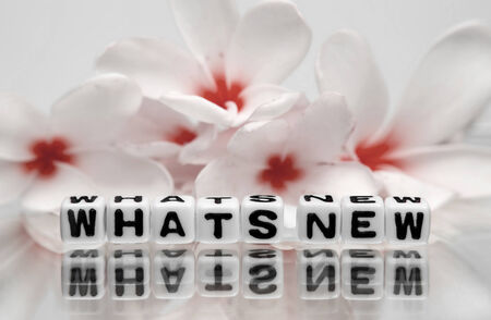 Whats new text message with red and white flowers.  photo