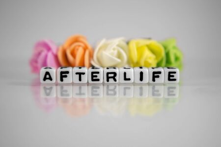 afterlife: Afterlife text message with flowers