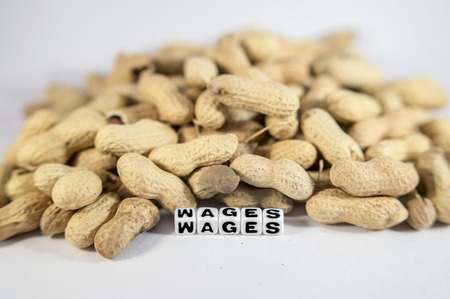 dissatisfaction: Wages text with peanuts and letters