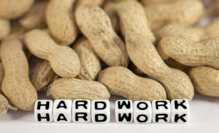 paycheck: Hard work with peanuts and text on cubes