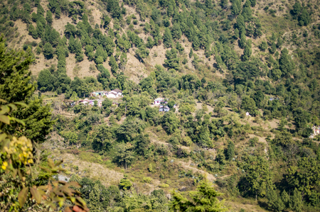 tree landscape: Mountain homes and the jungle in the valley.