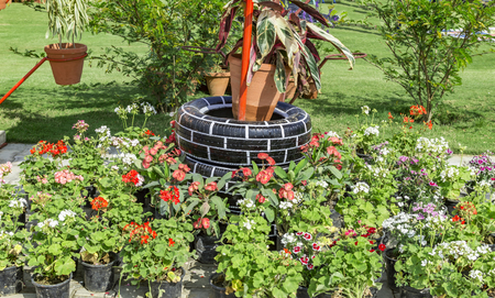 Used tires in garden for decoration.