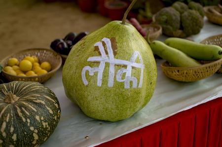 Bottle gourd calabash with hindi text written on it Zdjęcie Seryjne