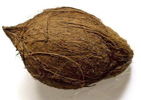 Whole coconut with hard shell in down position