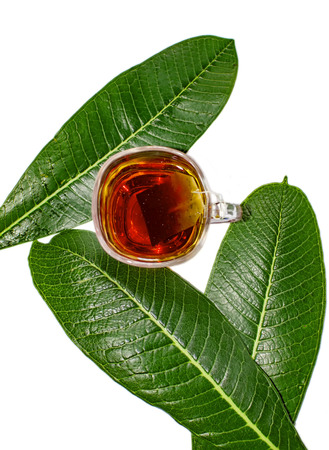 Tea in cup surrounded by green leaves Stock Photo