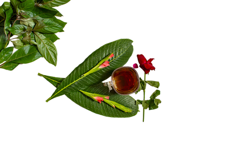 Red rose flower and tea cup with green leaves