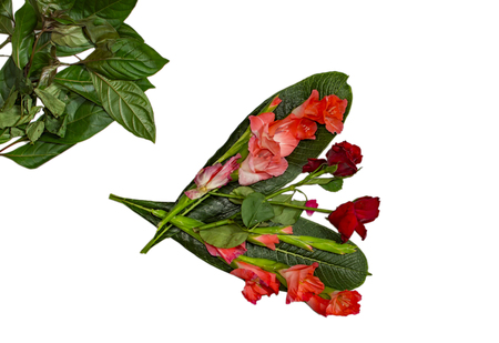 Mixed pink and red flowers along with roses on green leaves