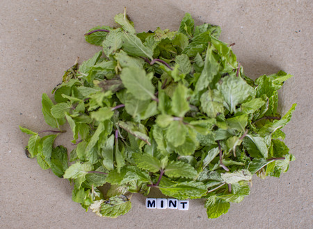Mint leaves with text message and label on surface