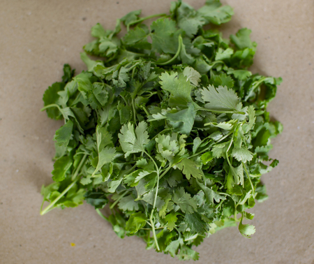 Heap of coriander leaves of green texture on grungy surface Stock Photo