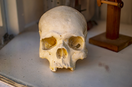 The skull in window in the town of uk london