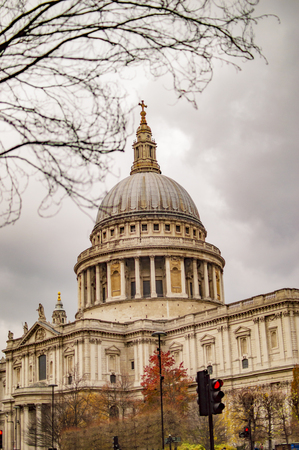London saint paul cathedral with tree before it