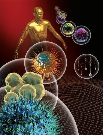animal cell: 3d prestados representaci�n de las c�lulas madre y una figura humana.  Foto de archivo