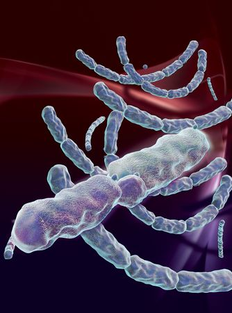 3D rendered conceptualization of Anthrax Bacteria