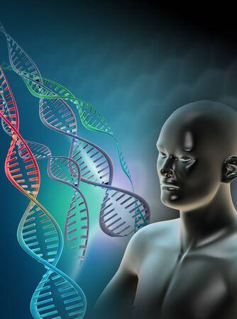 이중 가닥 DNA (디옥시리보 핵산) 분자를 보여주는 컴퓨터 작품. DNA는 이중 나선으로 꼬인 두 가닥으로 구성되어 있습니다. DNA는 인체의 유전 정보를 부