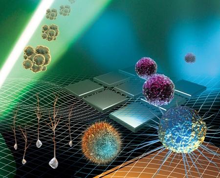 3D gesmolten conceptualisering van stamcelonderzoek Stockfoto - 12544872