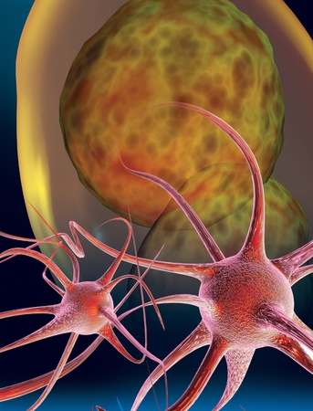 3D rendered conceptualization of a nerve cell or neuron photo