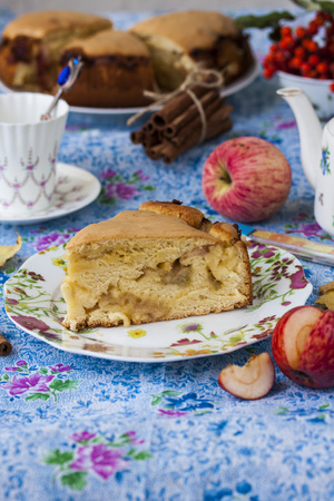 Piece of apple pie with cinnamon and caramelized apples