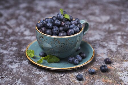 wildberry: Fresh blueberries in small mug, selective focus