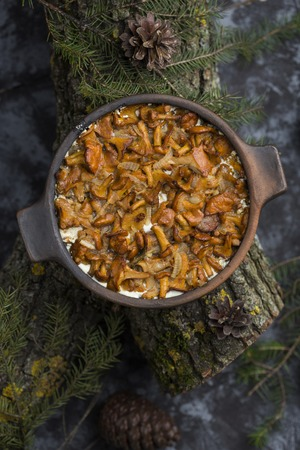 chanterelles in sour cream baked in a ceramic dish Stock Photo