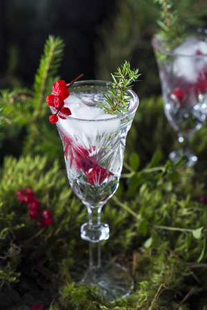 alcoholic cocktail with vodka, ice and berries