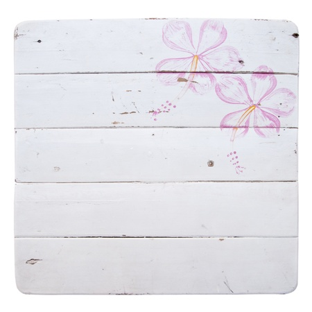 Painting flowers on a white ground  photo