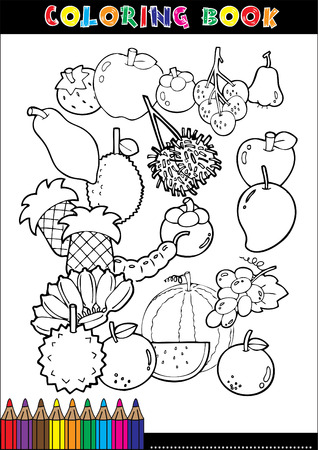 apples and oranges: Set of Fruit doodle drawings vector Illustration