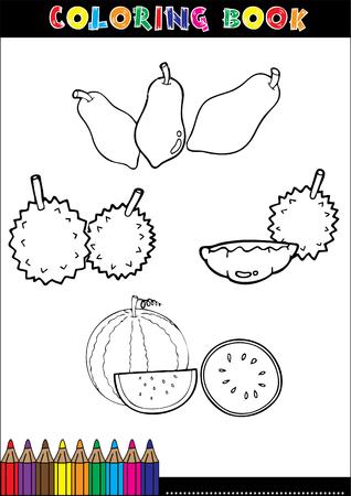 rambutan: Set of Fruit doodle drawings vector eps10 Illustration