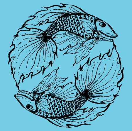 pices: Stylised fish illustration.eps10 Illustration