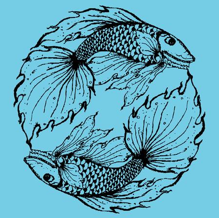 pices: Stylised fish illustration.eps10 Illustration