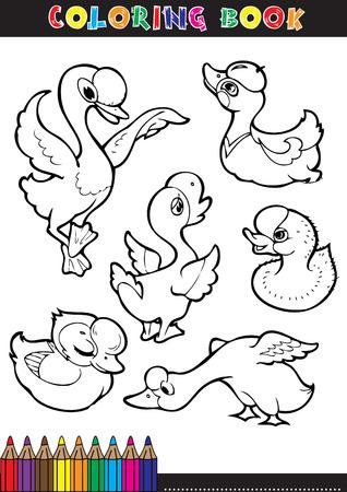 dibujos para pintar: Libros para colorear o p�ginas para colorear ilustraci�n en blanco y negro de dibujos animados de una cig�e�a.