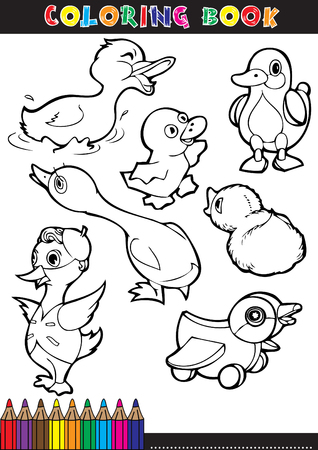 dibujos para pintar: Libros para colorear o p�ginas para colorear ilustraci�n en blanco y negro de dibujos animados de un patito.
