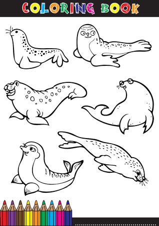 Coloring page or color comics black and white seals. Stock Vector - 22712064