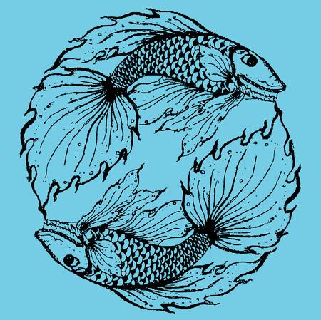 pices: Stylised fish illustration. Illustration