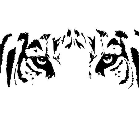 animal eye: Vector Abstract testa di tigre. Vettoriali