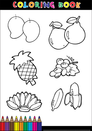 Set of Fruit doodle drawings vector. Vector