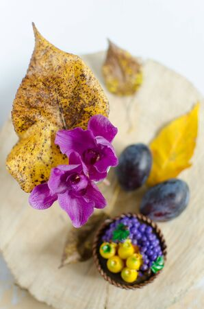 purple leaf plum: Autumn composition from leaves, orchids and plum