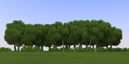 3D Cartoon anime nature trees texture background Stock Photo