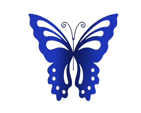 A beautiful blue butterfly illustration on white.
