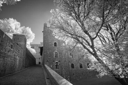 Black and white view of the old castle