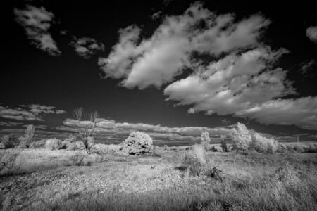 thermography: Landscape in infrared light Stock Photo