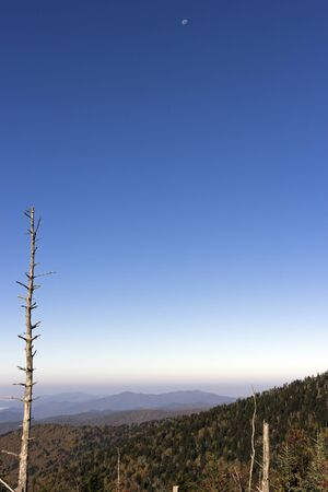 smoky mountains: Fall in Great Smoky Mountains National Park