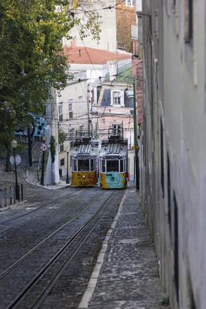 trams: Remodelado trams in Lisbon in Portugal