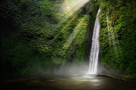Waterval in het tropische woud. Munduk, Bali, Indonesië. Stockfoto - 44698536