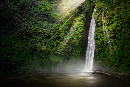 Waterfall hidden in the tropical jungle. Munduk, Bali, Indonesia