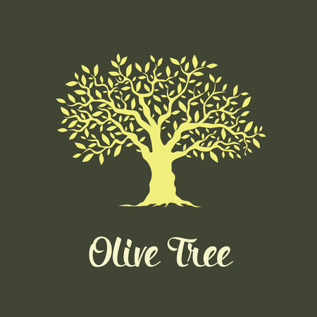 Beautiful magnificent olive tree isolated on green background. Premium quality logo concept vector illustration.