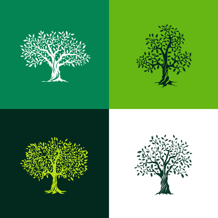 wood furniture: Beautiful oak and olive trees silhouette set on green background. Infographic modern isolated vector sign. Premium quality illustration logo design concept.