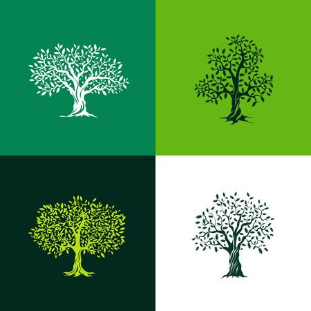 Piękne dębowe i drzew oliwnych sylwetka zestaw na zielonym tle. Infografika nowoczesny izolowane znak wektora. Jakość ilustracja logo koncepcja Premium.